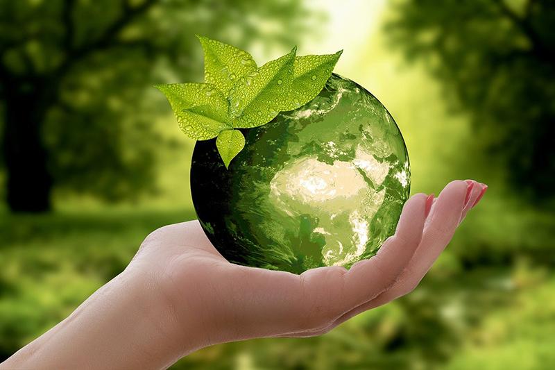 Amazon The Climate Pledge empresas sostenibilidad noticias retail