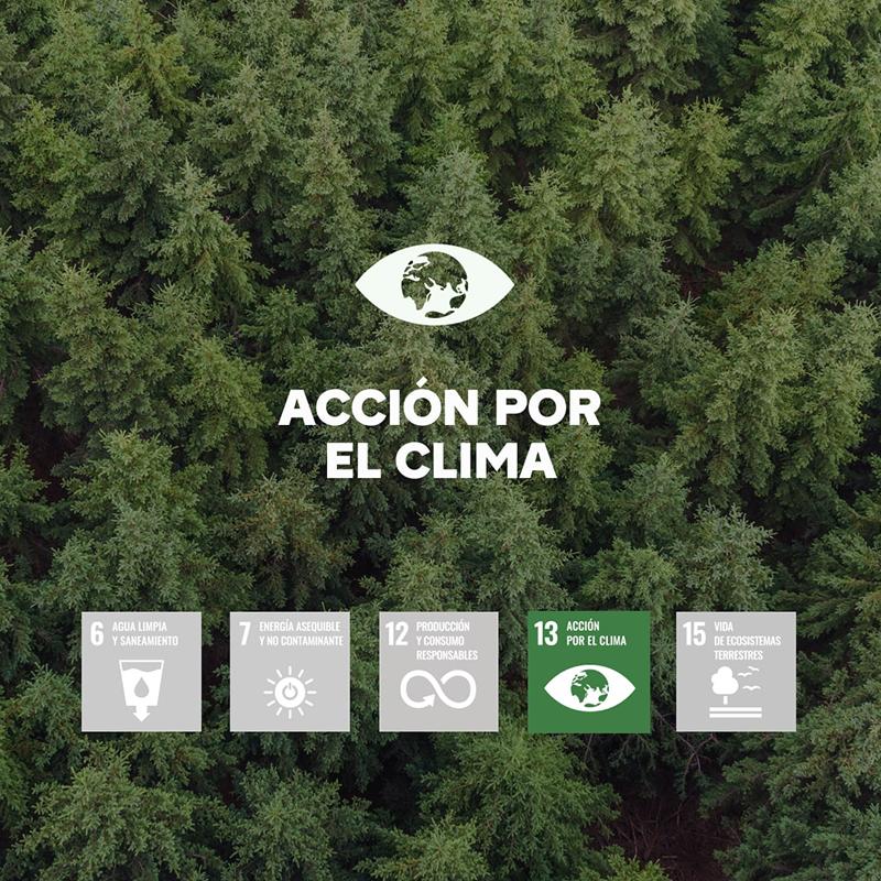 Brico Depôt Día del Medio Ambiente ODS noticias retail