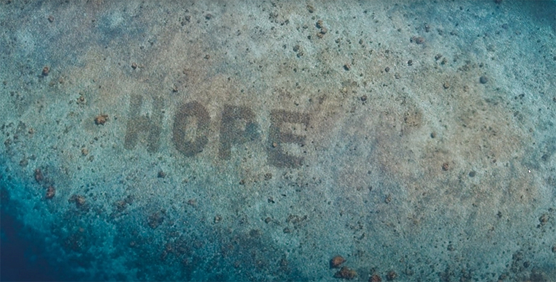 Mars Sheeba recuperación océanos arrecifes coral noticias retail